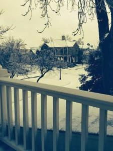 Snow Habor Town Blvd