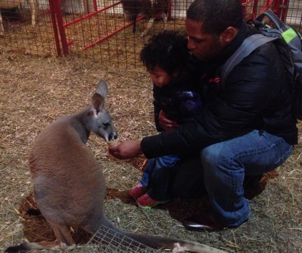 gabby kevin kangaroo