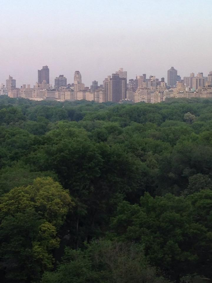 View of Central Park from Robert Restaurant.