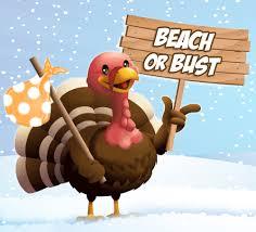 turkey going to beach