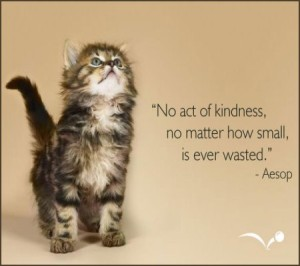 image-cedc980d61e20a9a08f0c8d37265f4ce-february-17-random-acts-of-kindness-day