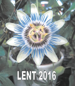 Lent-2016-885x1024