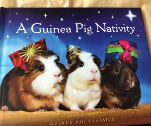 Guinea Pig Nativity book